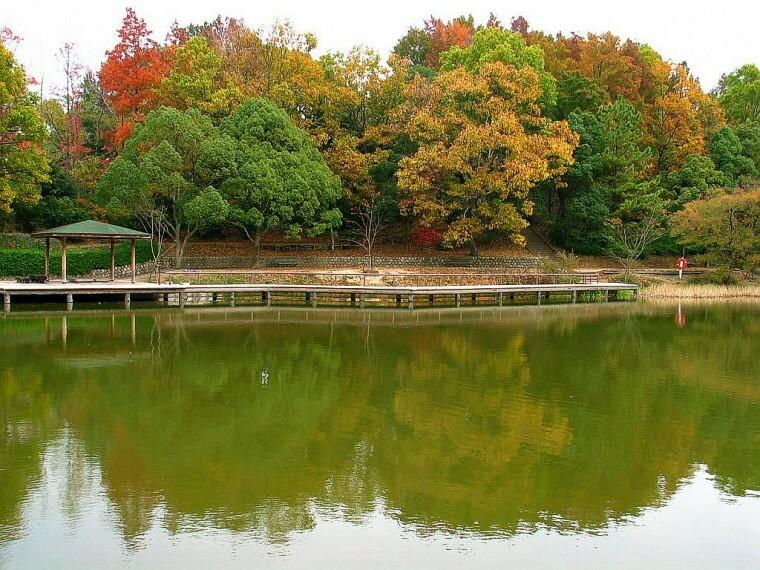 公園 【公園】奥須磨公園まで100m