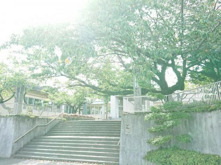 小学校 【周辺環境】宮田小学校まで約700m(徒歩約9分)です。小学校が歩いて10分圏内なのは物件選びの大事なポイント。前面道路も車通りが少ないので、安心してお見送りできますよ。