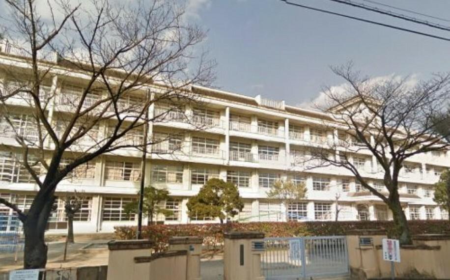 小学校 【小学校】高知市立昭和小学校まで745m