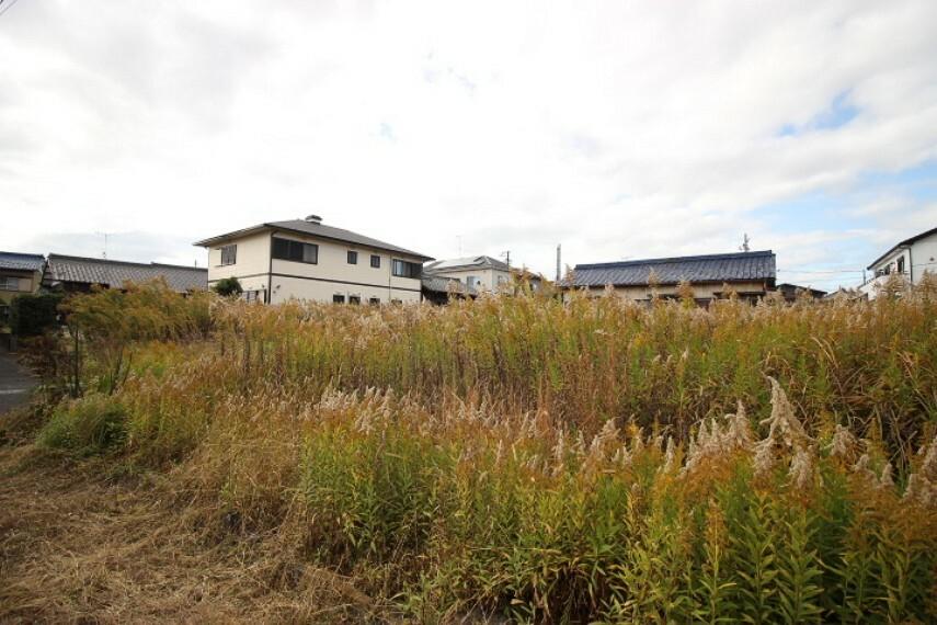 外観・現況 規制:半田市ふるさと景観、準防火地域