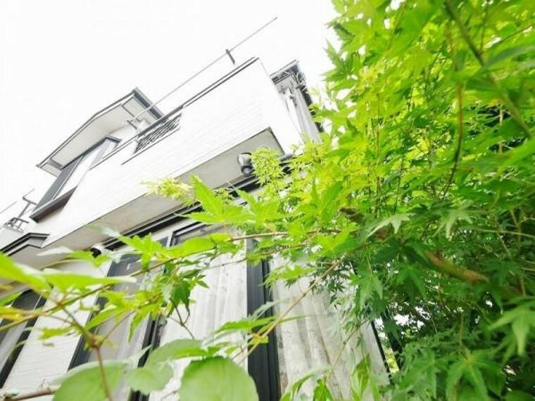 現況写真 四季折々の緑が囲む邸宅。季節の彩りが住まう 家族を彩ります。
