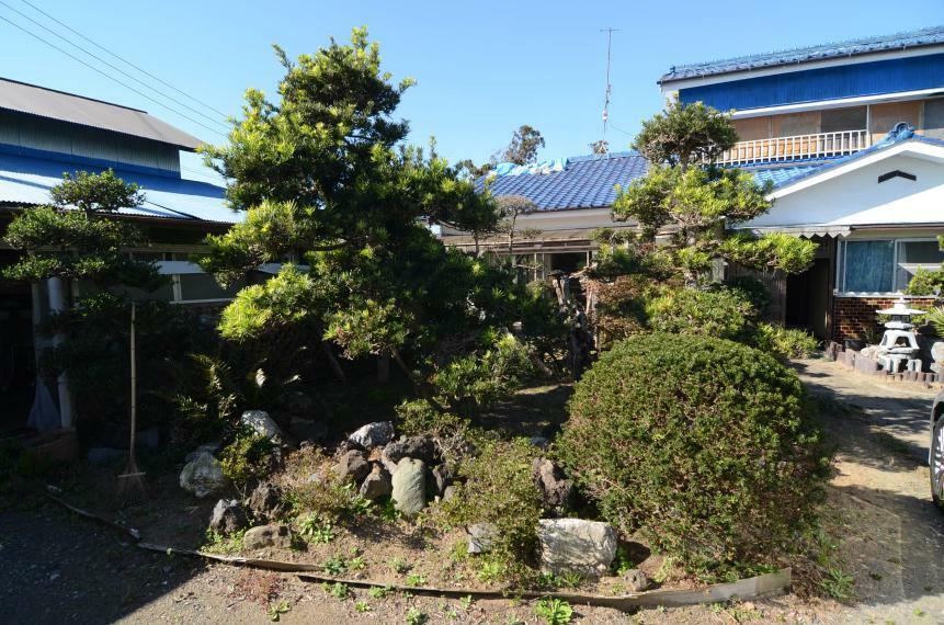庭 庭の様子
