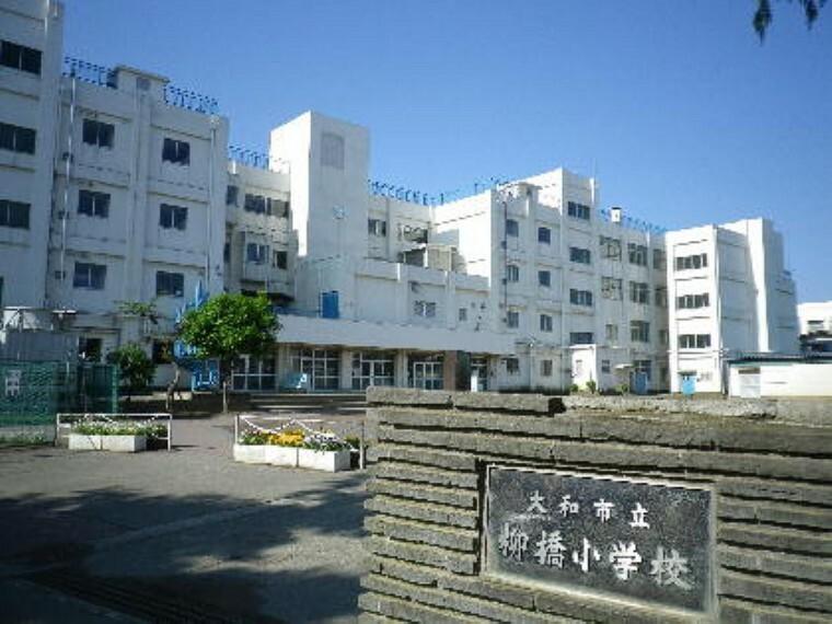 小学校 【小学校】大和市立柳橋小学校まで1522m