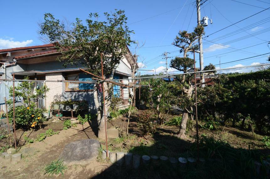 庭 庭木や菜園コーナーあり