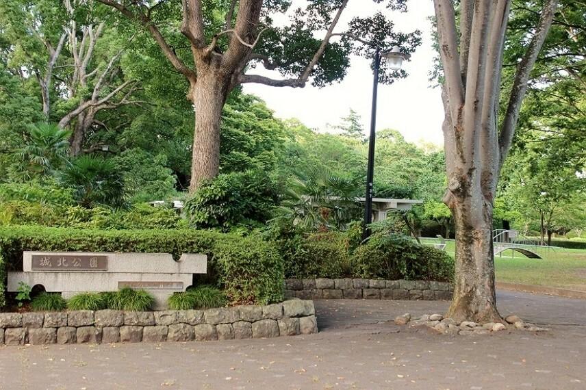 公園 城北公園