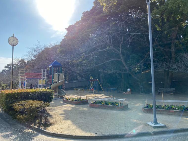 公園 中央公園