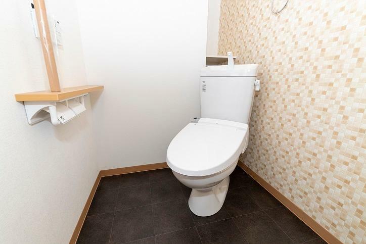 同仕様写真(内観) お手洗いもスタイリッシュな空間に仕上げました。手すりや飾り棚も設けた使い勝手のよいトイレです。
