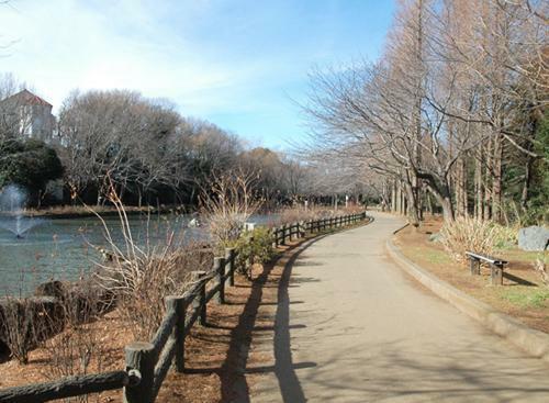 公園 貝殻山公園