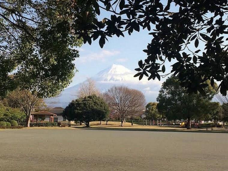 公園 徒歩5分(350m) 富士市中心部に位置している「地元の憩いの場所」です。トランポリンの様なネット遊具は、お子様に大人気です。