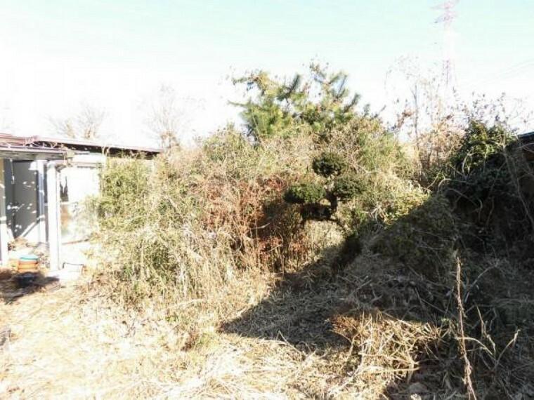 庭 (リフォーム前)東側の庭スペースです。境界にフェンス設置、物置・草木を撤去します。