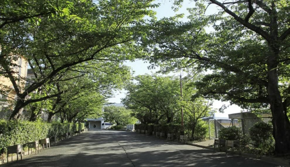 中学校 ●市立桜台中学校まで徒歩4分(約290m) 春は桜が咲き、とても綺麗です。徒歩4分の距離なので、毎日の登下校も楽ちんです。