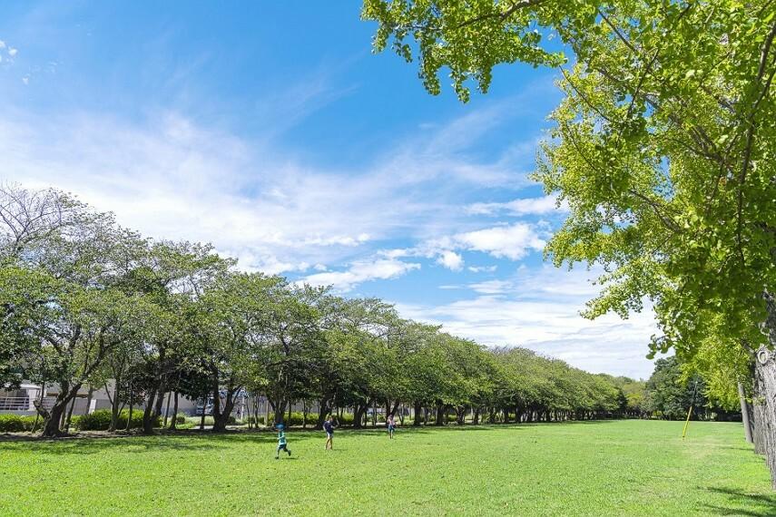 公園 袖ヶ浦第三緑地(徒歩2分)南側に広がる15000平米の緑道