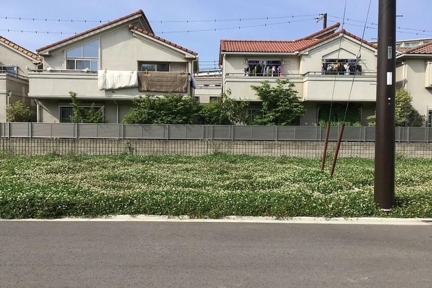 現況写真 No.23_宅地(撮影_2021年5月)南道路区画につき日当たり良好です。