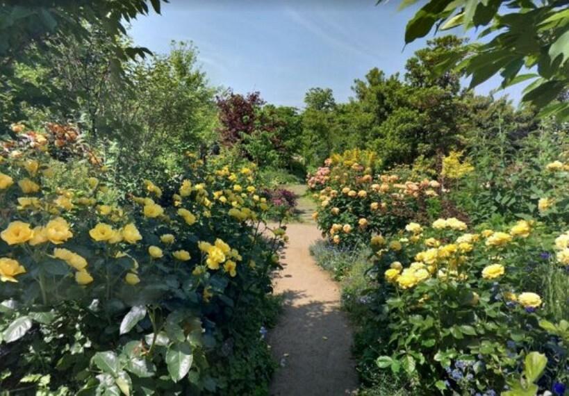 公園 約1800品種のバラを楽しめる「横浜イングリッシュガーデン」