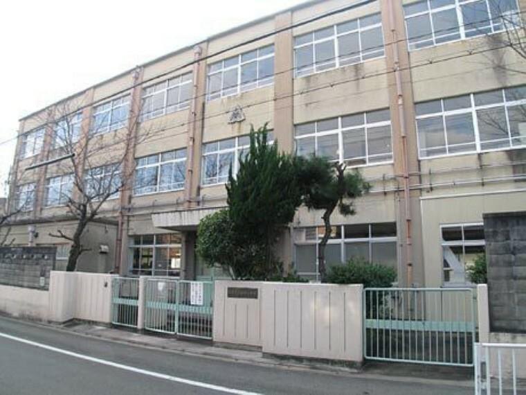 小学校 京都市立柏野小学校