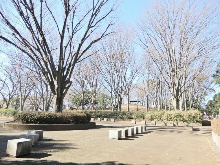 公園 東大和市上仲原公園、約4ヘクタールの広さをもつ市立公園。テニス、野球(野球場1面)がある。公園内にはけやき(市の木)の大木が象徴的に植えられている。市民の憩いの場として重宝さている場所。