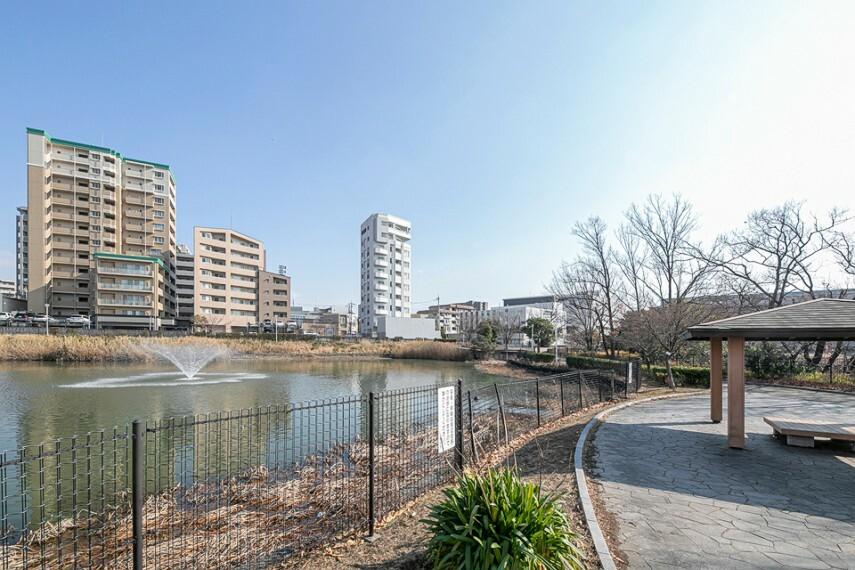 現況写真 はたかいけ公園まで徒歩8分(約600m)。噴水や野鳥の餌となる樹木を設けるなど、周辺の自然環境に配慮した設計の公園。池の周囲は散策でき、芝生広場や水辺が望める休憩場が整備されています。