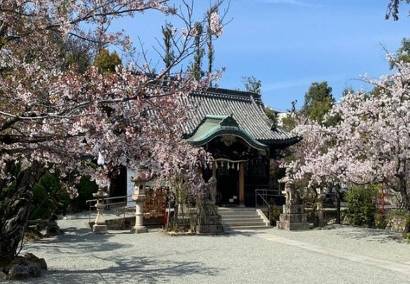【寺院・神社】春日神社まで303m
