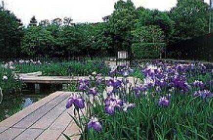 公園 【公園】赤坂上池公園まで485m