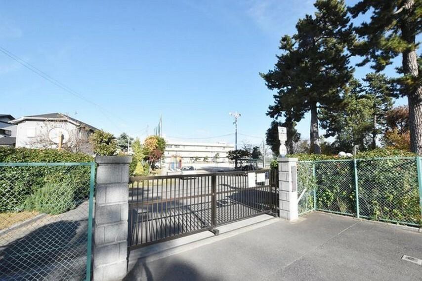 小学校 市川市立冨貴島小学校 徒歩11分。