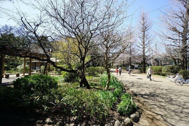 公園 哲学堂公園 徒歩33分。