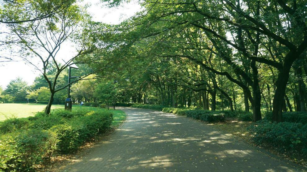 公園 【東村山中央公園】公園の東・西地区の樹林を中心として、バードサンクチュアリ、流れ、ゲートボール場、じゃぶじゃぶ池などがあります。 また、狭山・境緑道に隣接しており、サイクリングロードのオアシスになっています。