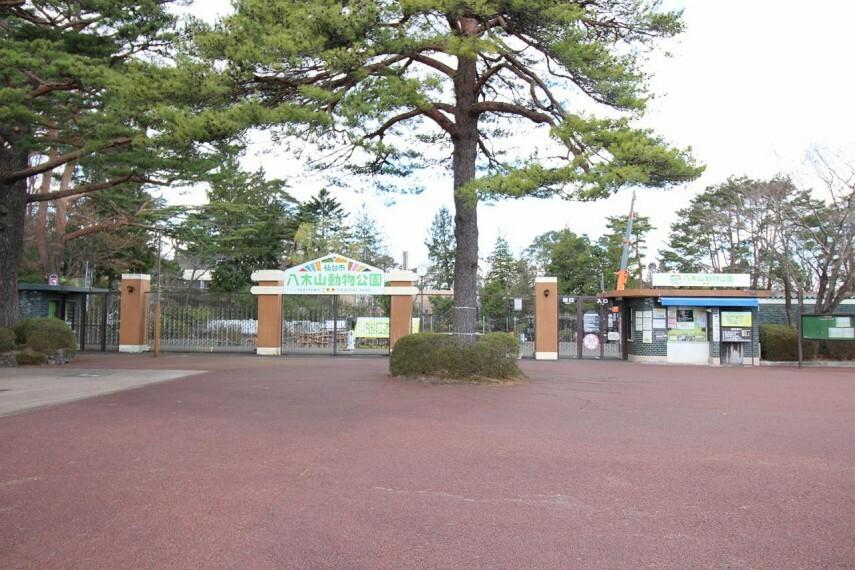 八木山動物公園フジサキの杜まで徒歩20分または車5分