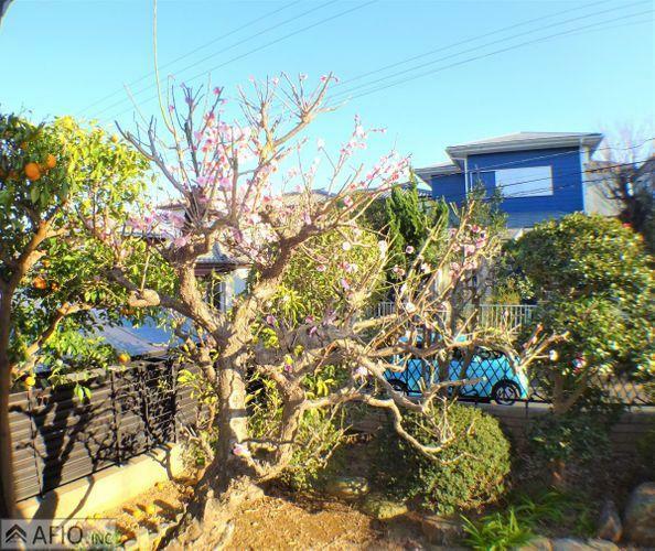 庭 嬉しいお庭付き。お子様と遊んだり、ガーデニングをしたり、お楽しみください。