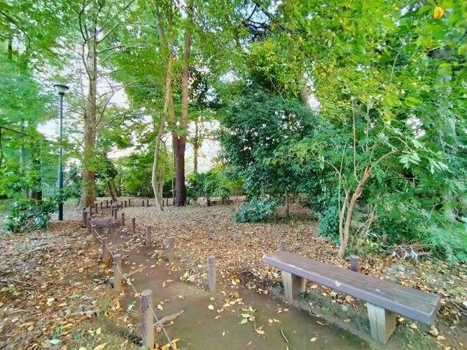 公園 たけしたの森緑地 徒歩12分。