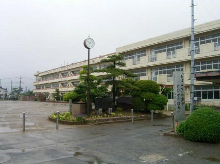 小学校 【小学校】羽鳥小学校まで1454m