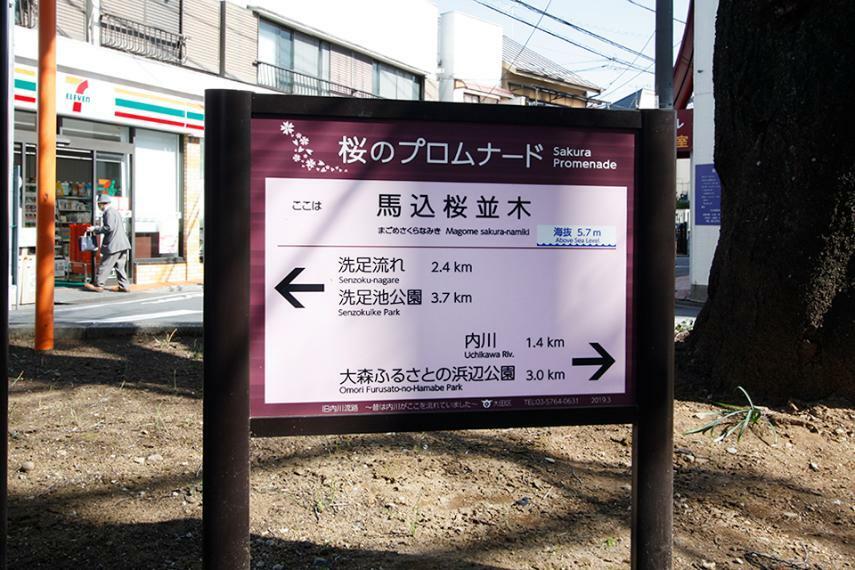 周辺の街並み 馬込桜並木 桜のプロムナード