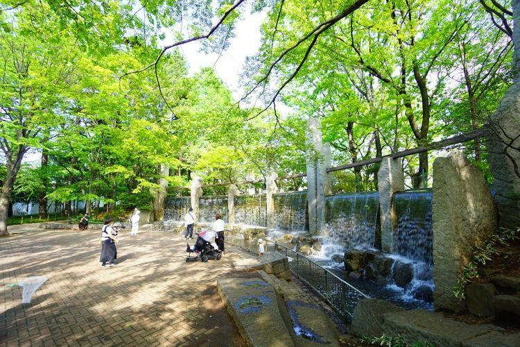 東高円寺駅前にある都会のオアシス・蚕糸森公園。杉並区ではワンちゃんも一緒に入る事の出来る数少ない公園です。