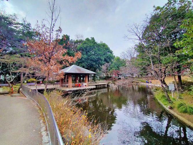 公園 蚕糸の森公園 徒歩6分。