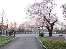 公園 玉川野毛町公園 徒歩20分。