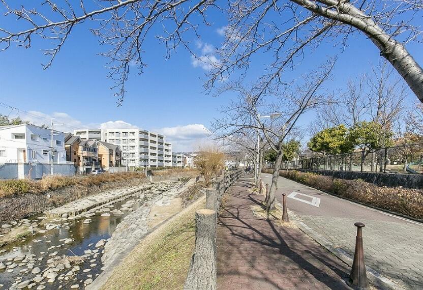 現況写真 野畑さくら通りへ徒歩2分(約120m)。千里川沿いに約100本の桜並木が続き、通り沿いにはベンチや公園があり四季折々の表情を楽しめます。河川敷にある公園では夏に水遊びができます。