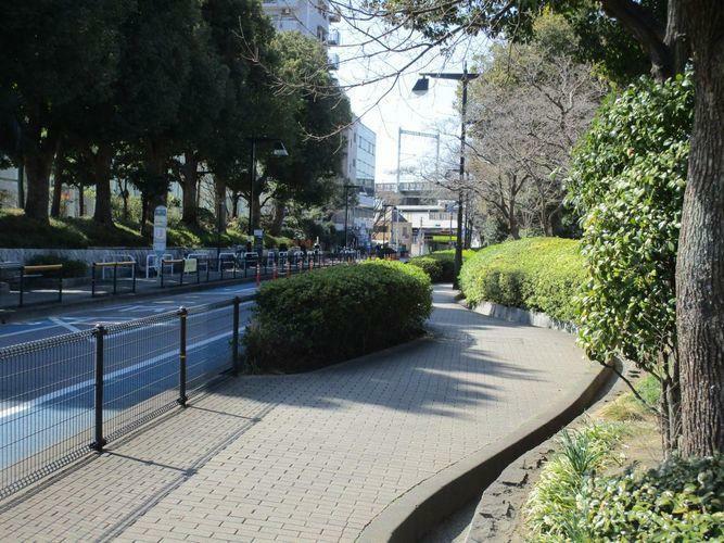 現況写真 西大井広場公園向かい側遊歩道