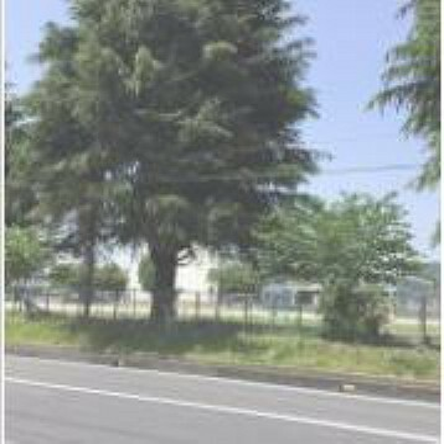 小学校 【小学校】 大久保小学校まで1000m