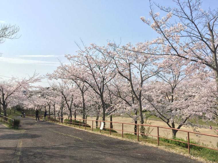 公園 梨の木公園