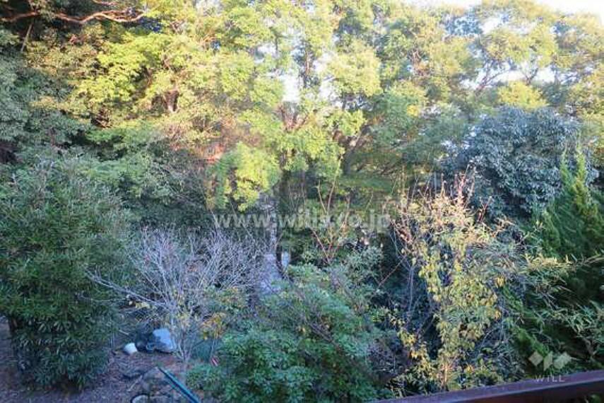 現況写真 2階からの眺望(南東方向)[2020年11月15日撮影]