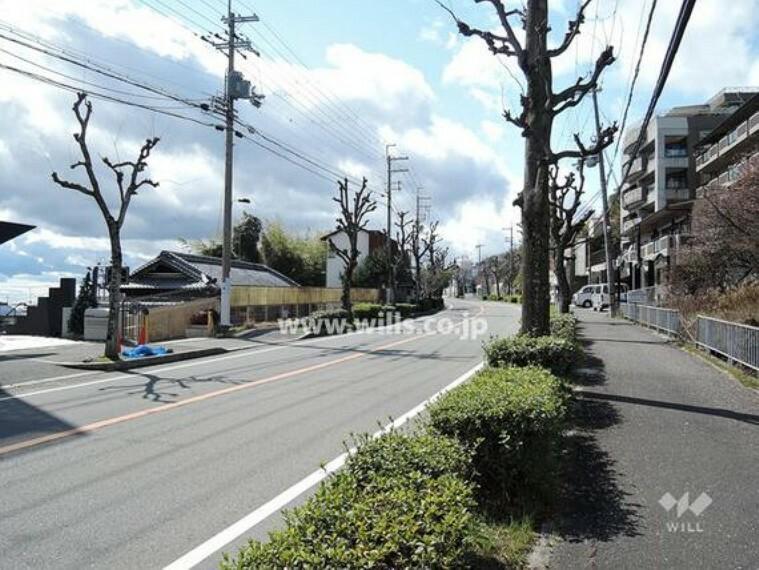 現況写真 物件の南側前面道路(東側から)[平成31年3月11日撮影]