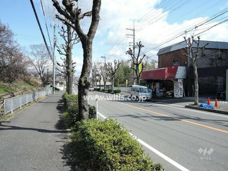 現況写真 物件の南側前面道路(西側から)[平成31年3月11日撮影]