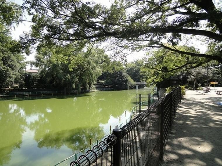 公園 武蔵関公園 【武蔵関公園】公園の約半分の面積を占める大きなひょうたん型の池があり、「葦の島」と「松の島」という2つの島があります。ボート場がありますので、休日には野鳥や公園のみどりを眺めてみてはいかがでしょうか。