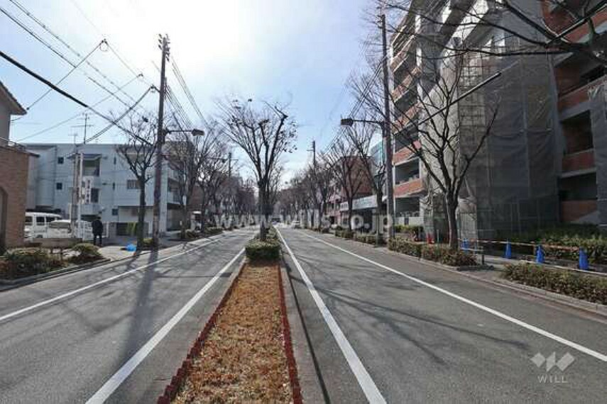 現況写真 マンションの前面道路。駅までは歩道が整備された並木道が続きます。