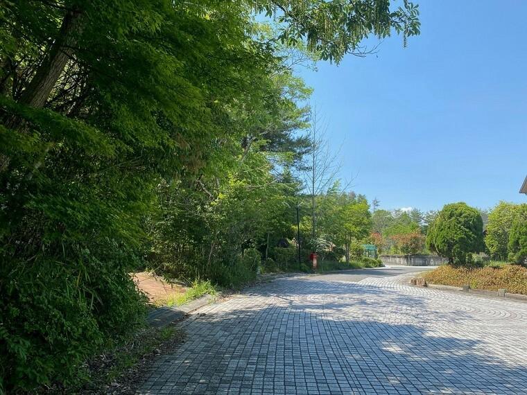 外観・現況 自然と舗装の装飾が施された前面道路