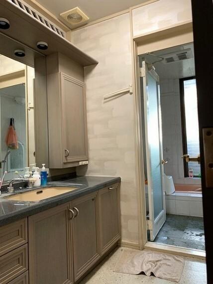 洗面化粧台 ワイド鏡付きの洗面所は収納も完備。散らかりやすい小物もスッキリ収納!