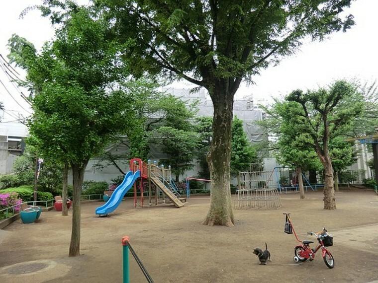 周辺環境 上原公園