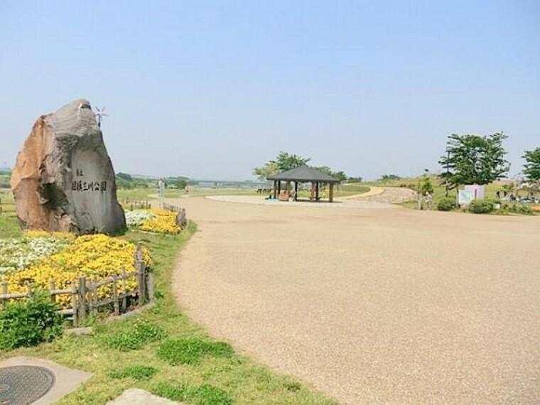 公園 県立相模三川公園