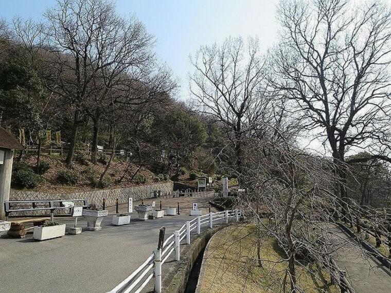公園 枚岡公園