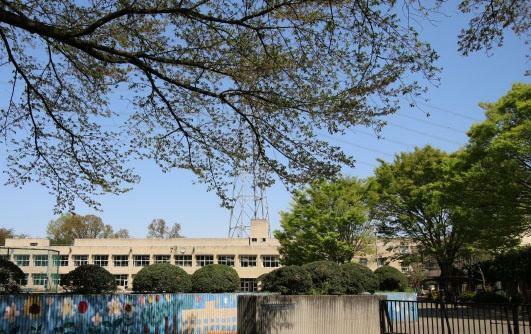 小学校 杉下小学校(600m)