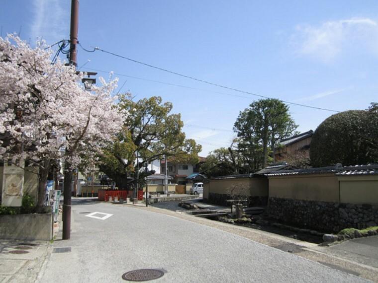 専用部・室内写真 周辺風景 明神川